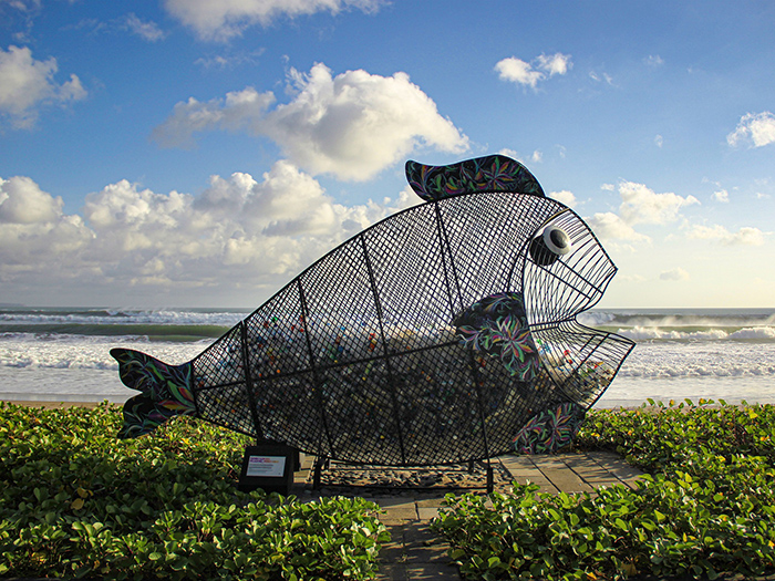 Plastic Ocean Waste Solutions
